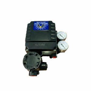 Bộ định vị tuyến tính 4~20mA NT-1000R-BT6