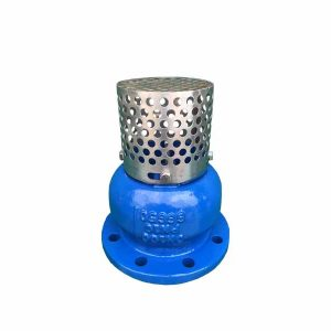DUCTILE IRON FOOT VALVE FLANGED ENDS PN16